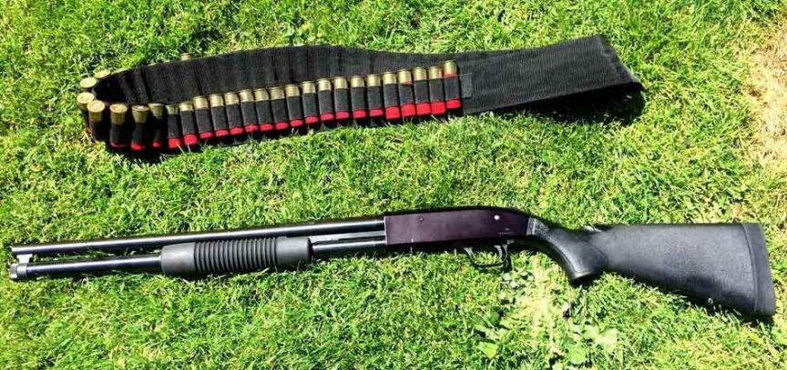 Mossberg 500 on the grass