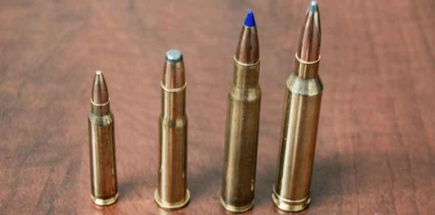 a selection of rifle ammunition