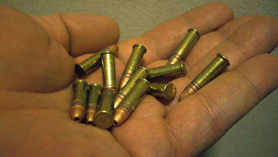 22lr ammunition in the palm of a hand