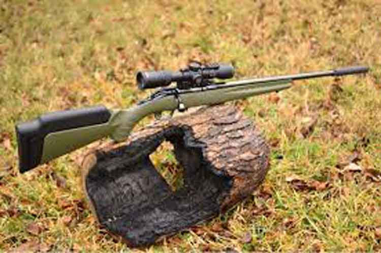 A 22lr rifle propped on a log