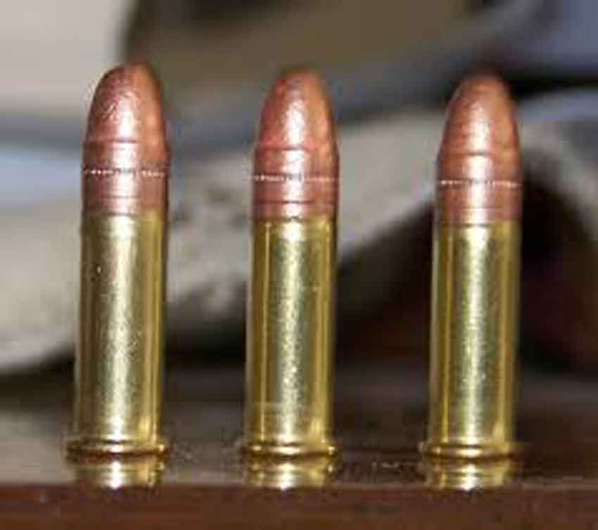 3 standing 22lr cartridges