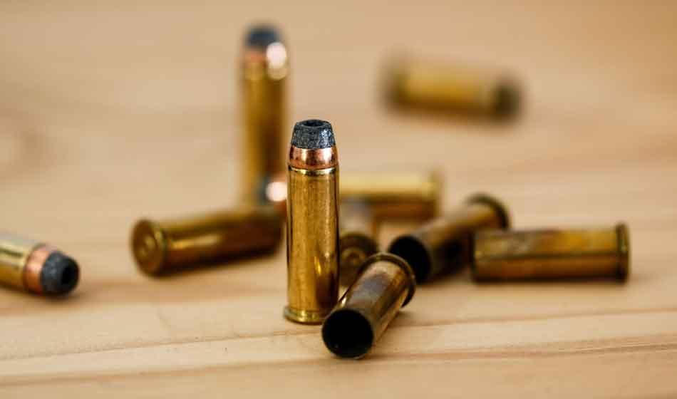 a few standing 22lr cartridges