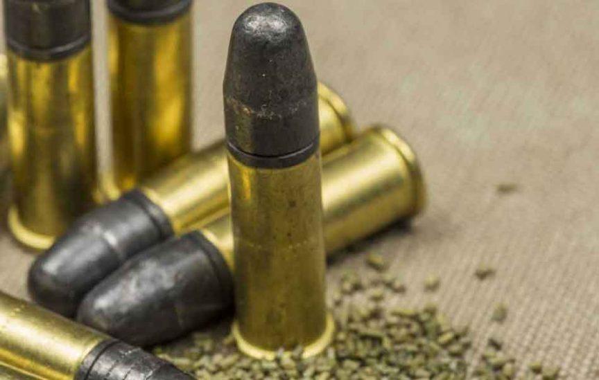 a standing 22lr round nose ammunition