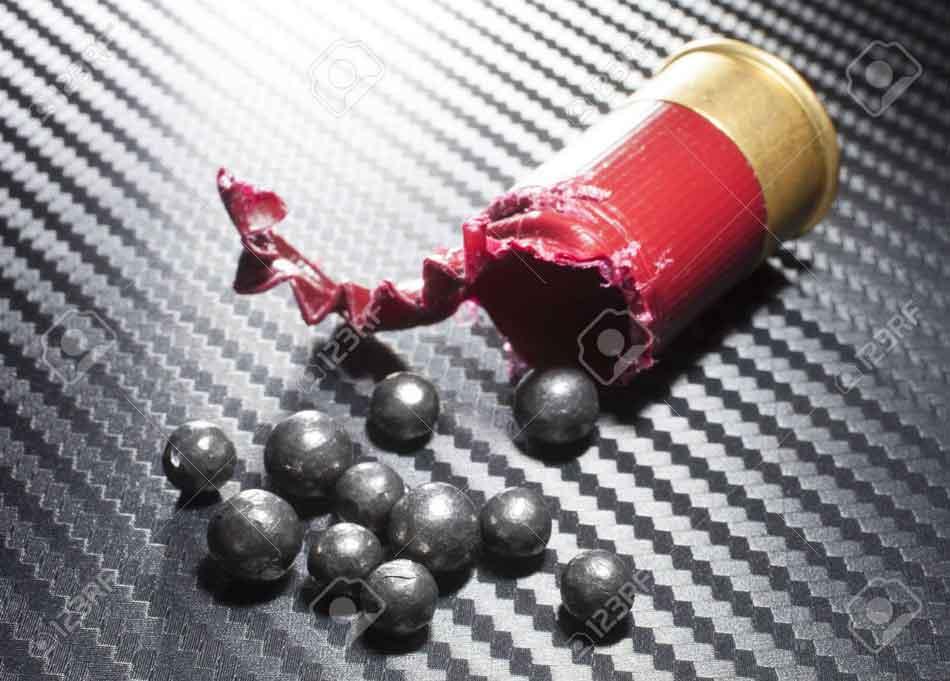 an exploded buckshot 12 gauge cartridge