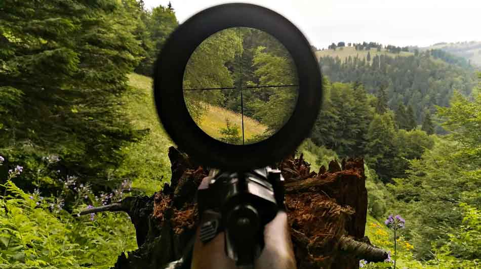 rifle scope sight picture to wooded area