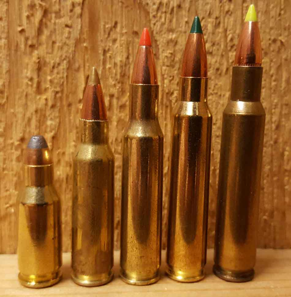 5 x magnum rounds side by side