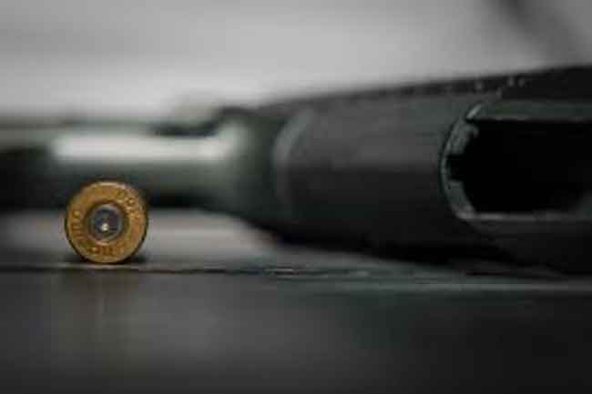 shotgun cartridge close up